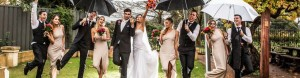 Professional Wedding Supplier – Plan Your Dream Day